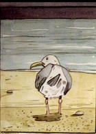Gull: cover